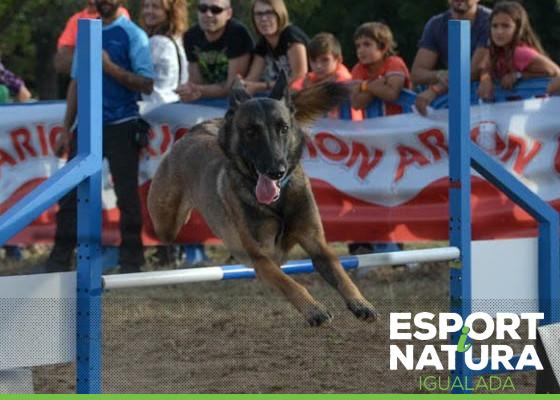 Espai 4 Potes Esport i Natura 2015