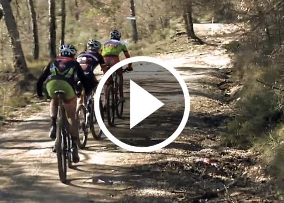 VolCAT 2012. Video