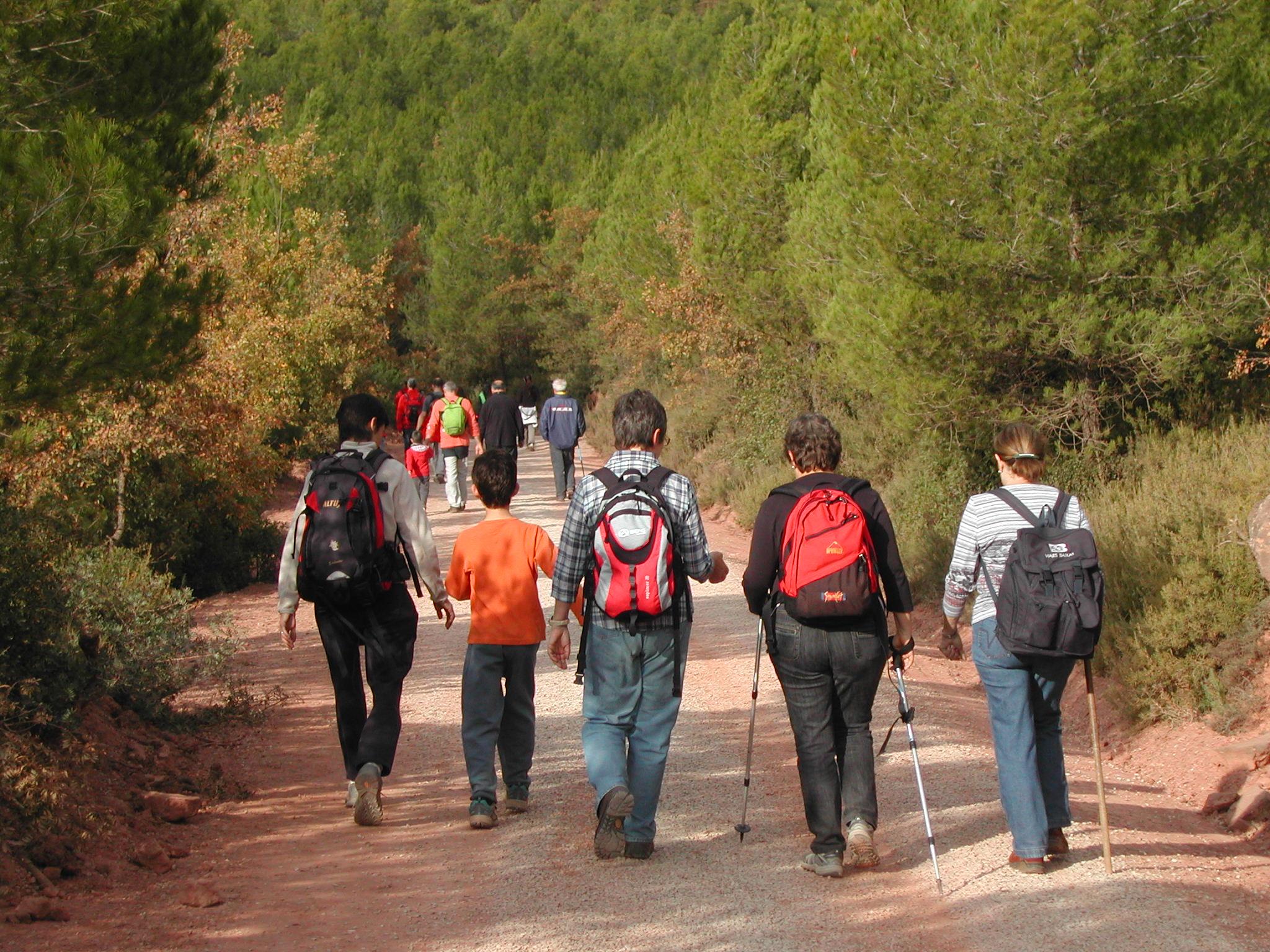 Descobreix el cor de Catalunya amb la Caminada popular de Rajadell del 6 de novembre