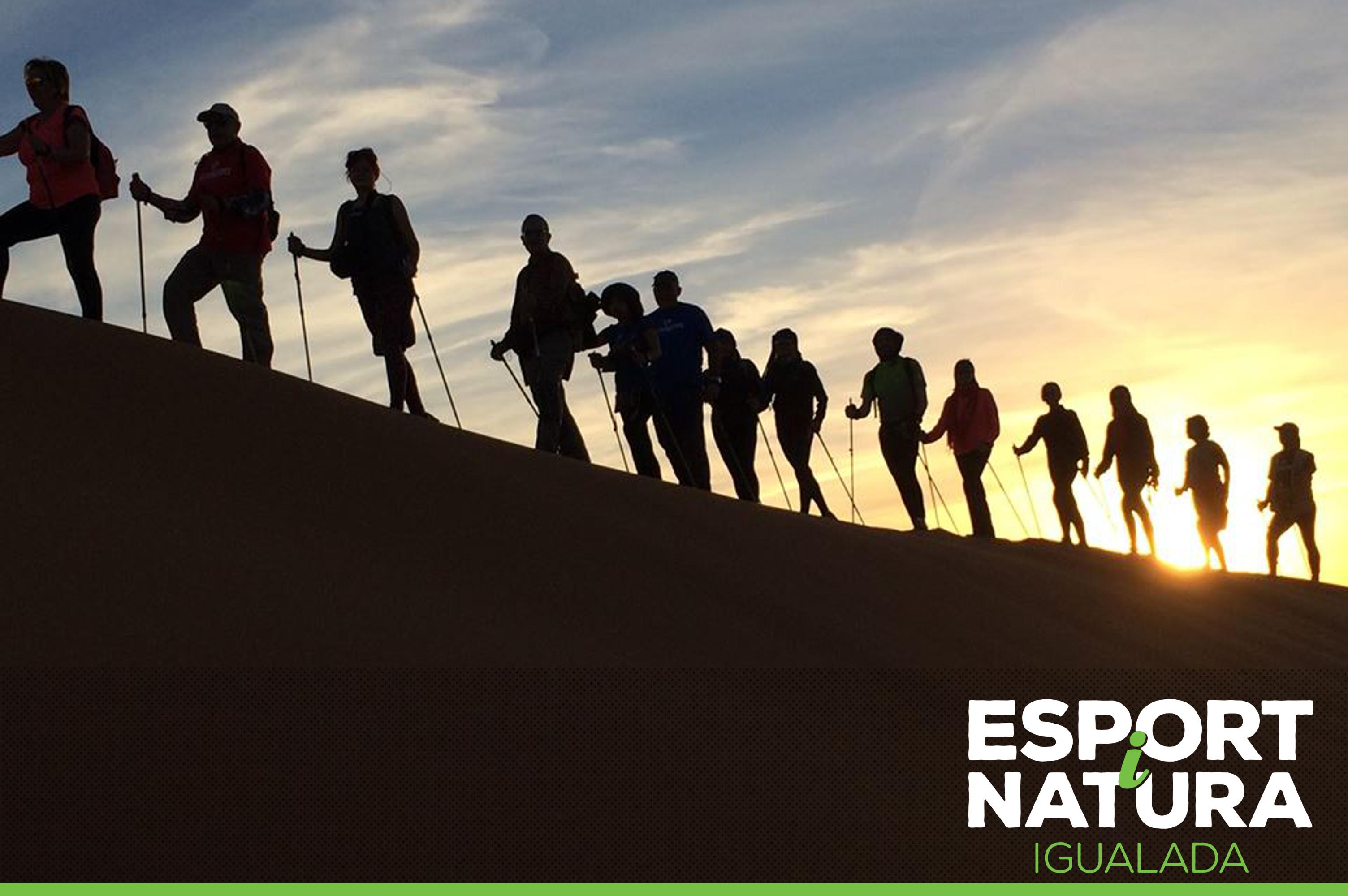 Curs gratuït de Marxa Nòrdica durant l'Esport i Natura